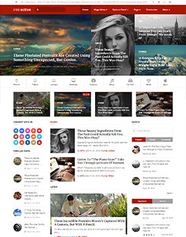 wordpress шаблон mythemeshop Interactive