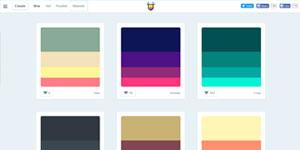 Цветовые схемы Color Hunt
