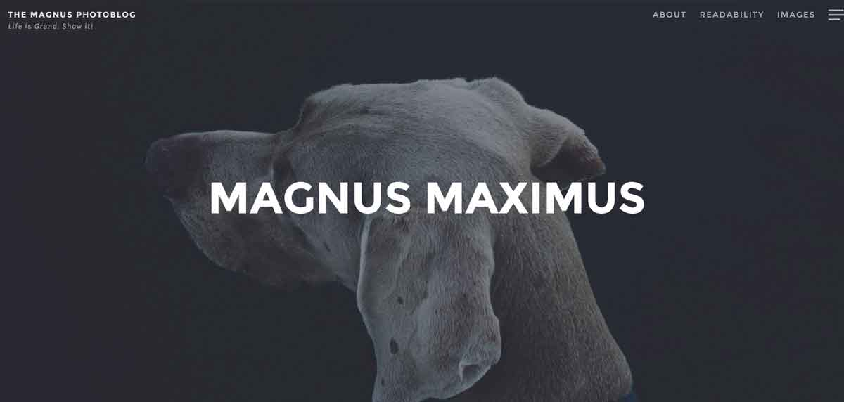 Бесплатный WordPress шаблон для фотоблога Magnus