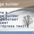 Если в page builder не работает виджет wordpress текст